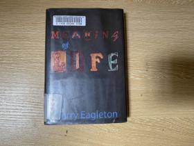 The Meaning of Life  伊格尔顿《人生的意义》英文原版,(文学理论 作者),文笔好,精装