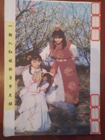 天上掉下个林妹妹纪实文学《鞍山美女》关于陈晓旭的成名之路(包邮)