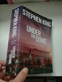 Under the Dome穹顶之下 英文原版