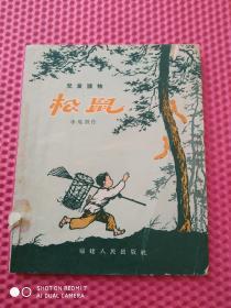 儿童读物  松鼠 1958年1版1印   福建人民出版社仅印1590册