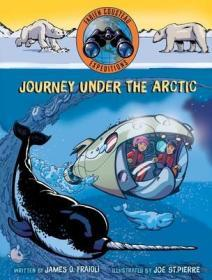 Journey under the Arctic