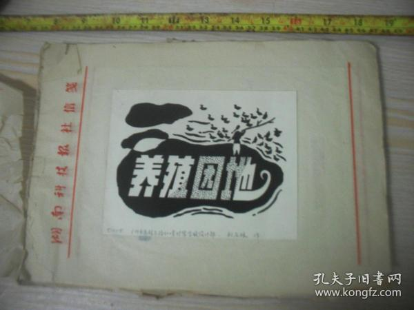 1990年代湖南科技报 报头设计稿 广州市惠福东路600号时装学校设计部刘石林