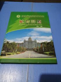 湖南省林业种苗中心植物图鉴