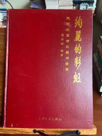 绚丽的彩虹 - 毛泽东像章收藏与鉴赏