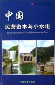 中国民营资本与小水电 李志武赵建达 河海大学出版社 9787563