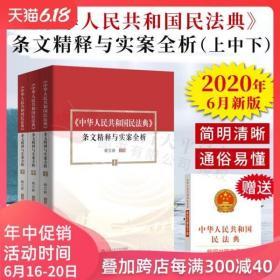 2020民法典新修订版 中华人民共和国民法典 条文精释与实案全析 上中下 杨立新解读新中国民法典释义判例评析案例指引法律书籍全套