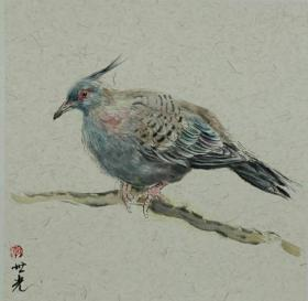 青年新锐油画家疫情其创作国画小品《鸟系列》3、33x33cm 作品成交记录雅昌拍卖可查