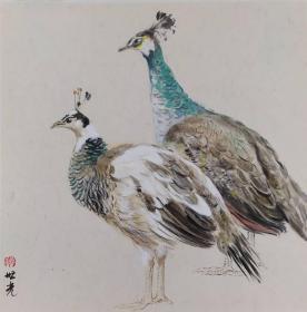 青年新锐油画家疫情其创作国画小品《鸟系列》4、33x33cm 作品成交记录雅昌拍卖可查