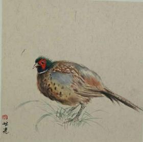 青年新锐油画家疫情其创作国画小品《鸟系列》5、33x33cm 作品成交记录雅昌拍卖可查
