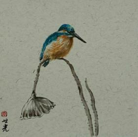 青年新锐油画家疫情其创作国画小品《鸟系列》8、33x33cm 作品成交记录雅昌拍卖可查
