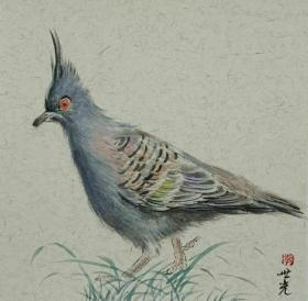 青年新锐油画家疫情其创作国画小品《鸟系列》1、33x33cm 作品成交记录雅昌拍卖可查