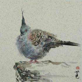 青年新锐油画家疫情其创作国画小品《鸟系列》2、33x33cm 作品成交记录雅昌拍卖可查