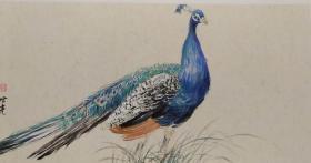 青年新锐油画家疫情其创作国画小品《鸟系列》10、50x30cm 作品成交记录雅昌拍卖可查