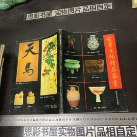 古董文物精品鉴赏:珍藏本