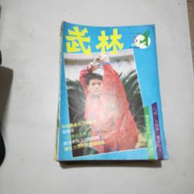武林  1994年第5期