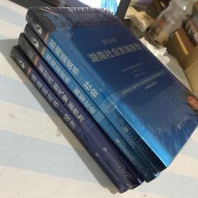 湖南蓝皮书:2018新时代新气象新作为、湖南蓝皮书、社会、两型社会、经济、四册