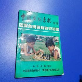 国际象棋战略战术初阶