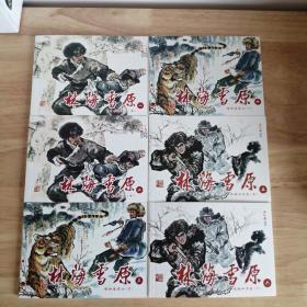 林海雪原  6册全 连环画