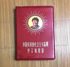 中国农村社会主义高潮序言和按语