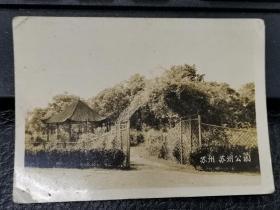民国苏州公园(少见的史料)