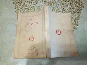 虎落笛  日文原版口袋书