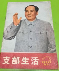 红色收藏书(支部生活)革命样板戏画刊彩色图片多多漂亮!