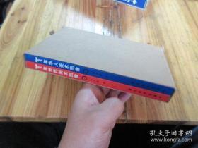 100年华人美术图像;100年世界美术图像 (2册合售)