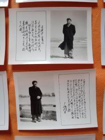文革照片  带毛主席诗词的毛泽东像照片18张合售!