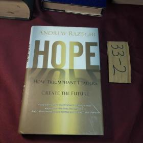 razeghi hope(外文原版)