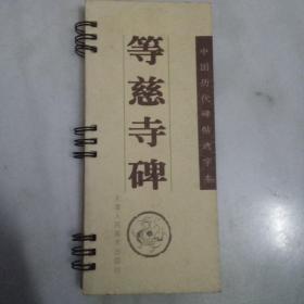 中国历代碑帖放大选字本:等慈寺碑