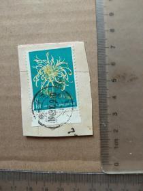 邮票(剪片)特44菊花柳线,带边