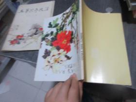 英文版图书: CHINAS RARE FLOWERS  库2