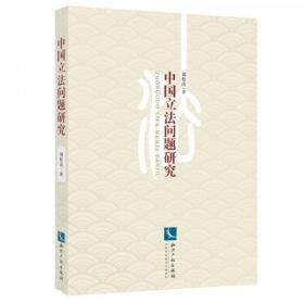 正版 中国立法问题研究 刘松山  著  知识产权出版社 9787513038904