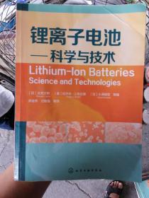 锂离子电池:科学与技术