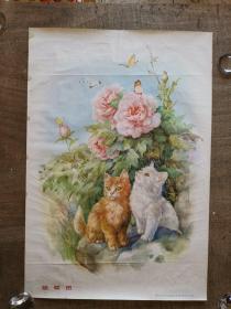 猫蝶图(50年代老版81年印)