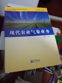 现代气象业务丛书:现代农业气象业务