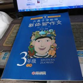 正版现货:2019大鼻子李教授新体验作文3年级下册