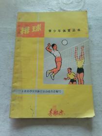 排球(青少年体育丛书)