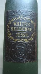 1851年 Natural History of Selborne– 《塞耳彭自然史》全插图古董书 42张精美雕版版画插图善本