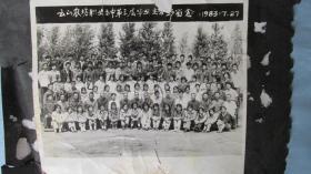 黑龙江省云山农场职业高中毕业留念照片——四张合售——1982至1983年