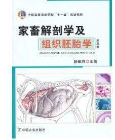 二手家畜解剖学及组织胚胎学(第四版)(杨银凤) 杨银凤 中国农业