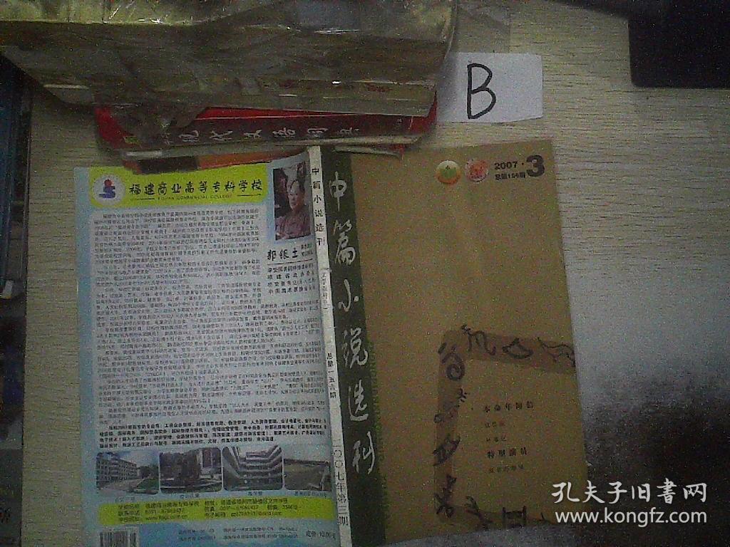 中篇小说选刊2007 3