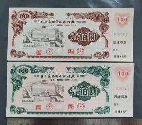 国营陕西广播电视设备厂股票2种 :普通股和风险股,图案鲜艳,以厂区为主要图案,慢版梅花水印
