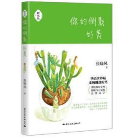 中学生读张晓风 正版 张晓风 著 9787512508026