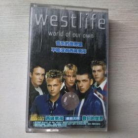 磁带 西域男孩 我们得世界