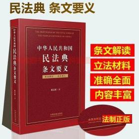 中华人民共和国民法典条文要义 杨立新 民法典条文解读释义立法原意立法背景2020年版民法典释义解读最新杨立新民法典