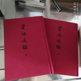资治通鉴 两本书合售(精装典藏本,全套30册 只存29和30两本)馆藏图书