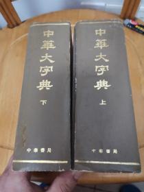 中华大字典上下册(缩印本全二册)