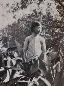 民国花园中的美女照片
