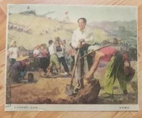 老画片、早期宣传画:毛主席和我们一起劳动